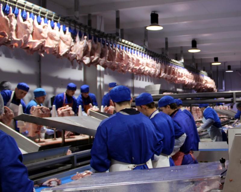 Группа «Евродон»: свыше 90 тыс тонн мяса