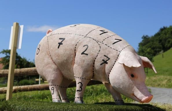 USDA: Мировое производство свинины вырастет на 2% в 2018 году