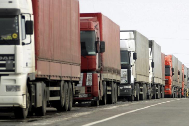 В Ростовской области задержали фуры с 18 тоннами мяса птицы без документов